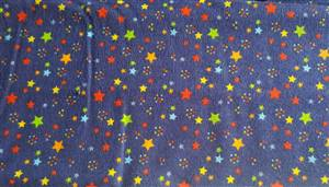 Blue Flannel Fabric + Stars
